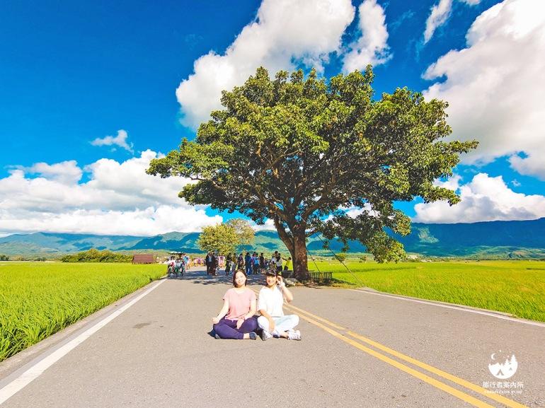 永遠都會被包圍的金城武樹(笑)
